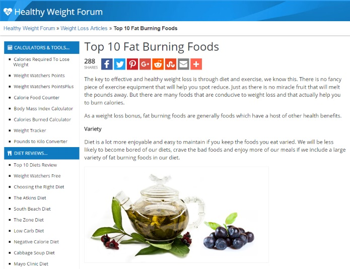 healthyweightforum on fat burning foods