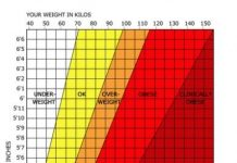 5 Best BMI Calculators You Will Want To Use