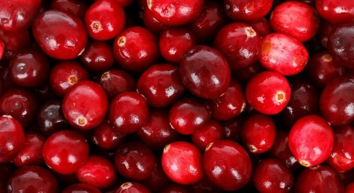 fresh red cranberries