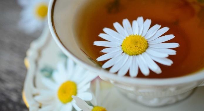 chamomile tea with flower