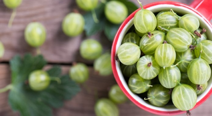 green-gooseberries-min