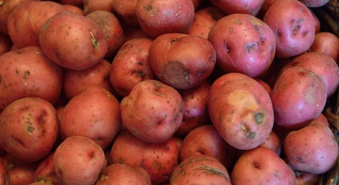 red potatoes-min