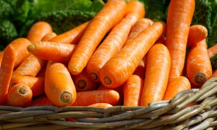 basket with carrots