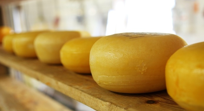 cheese on shelf