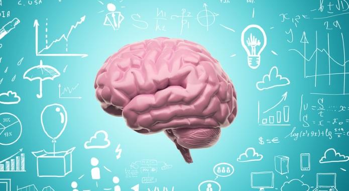 cool image of brain