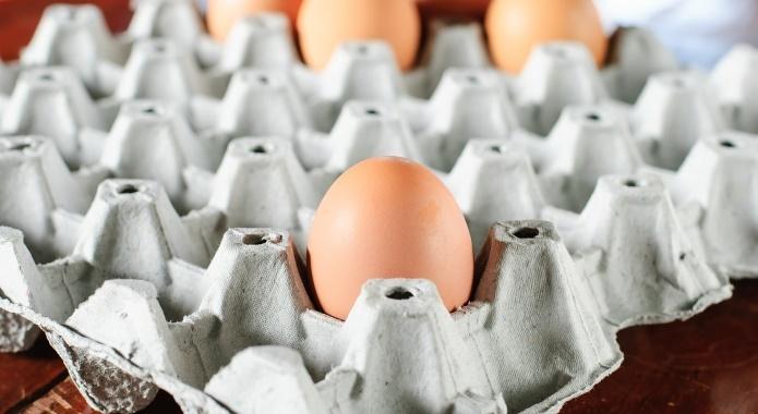 egg in paper box