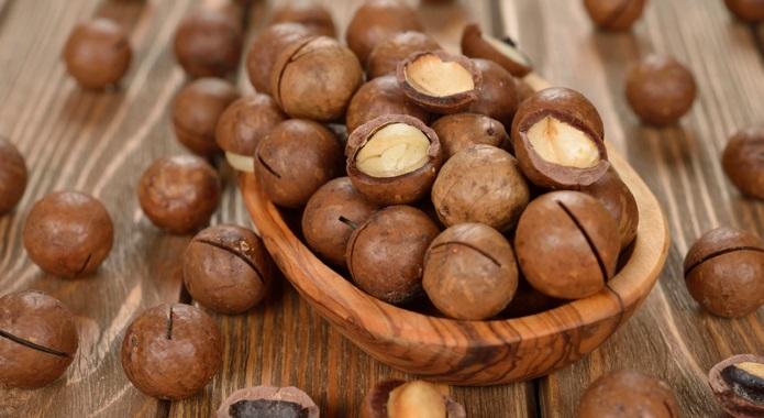 macadamia nuts desktop