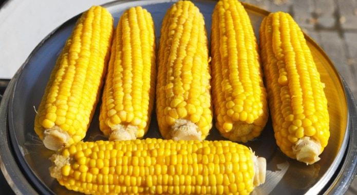 corn-min