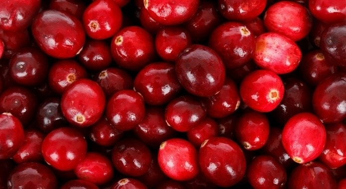 fresh-red-cranberries-1-min