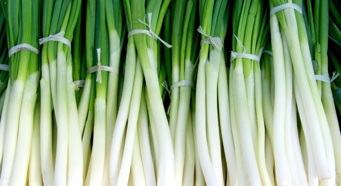 green onion-min