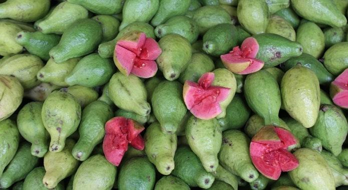 guava-min