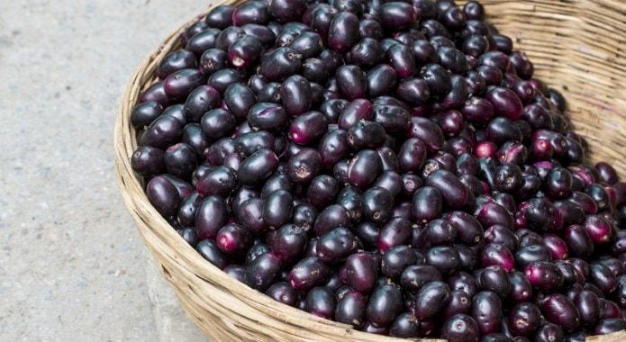 jamun-fruit-min