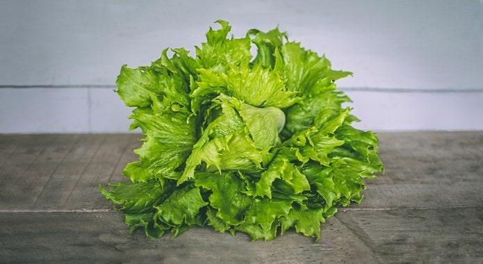lettuce-min