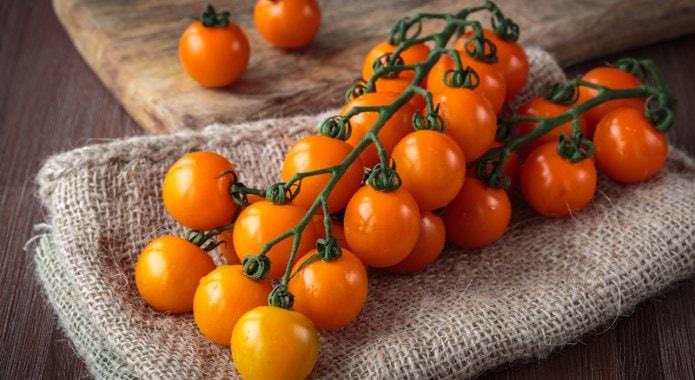 orange tomatoes-min