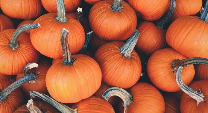 pumpkins-min