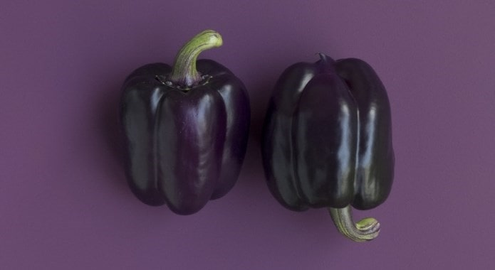 purple bell pepper-min
