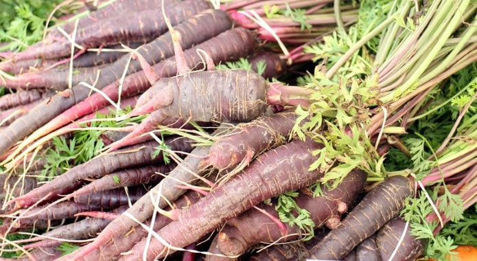 purple carrots-min