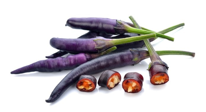 purple chili peppers-min