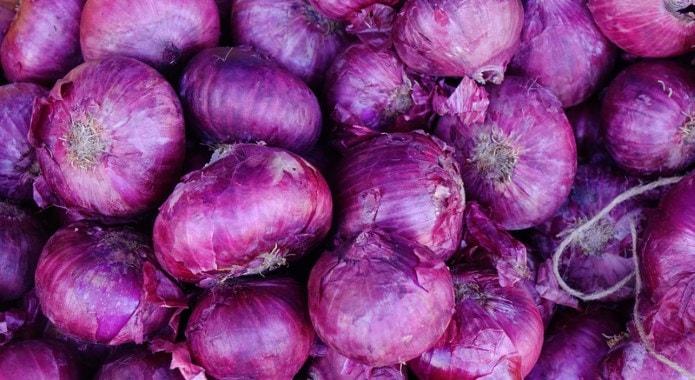 purple onions-min