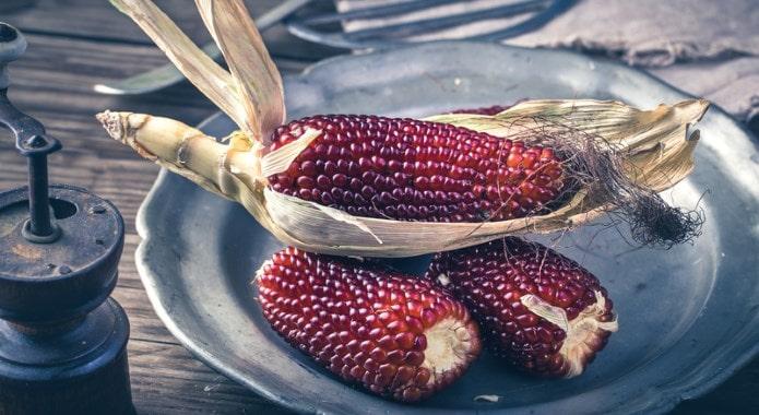 red corn-min