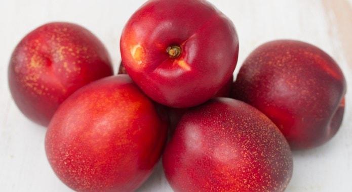 red-nectarines-min