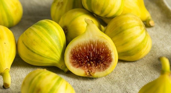 yellow-figs-min