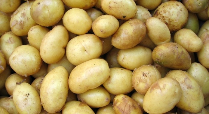 yellow potatoes-min