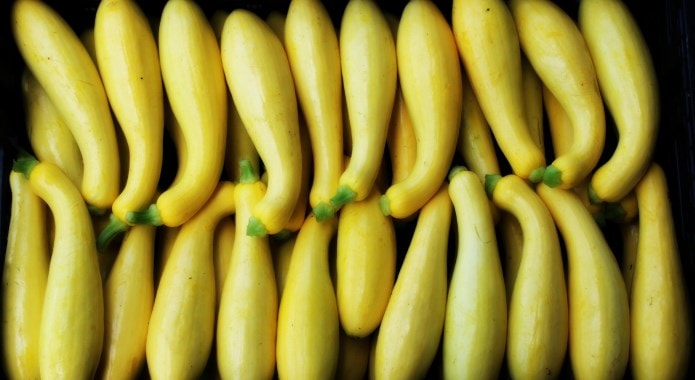 yellow summer squash-min