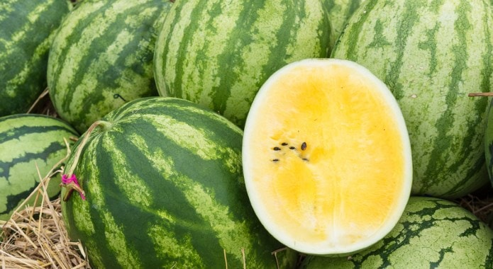 yellow-watermelon-min